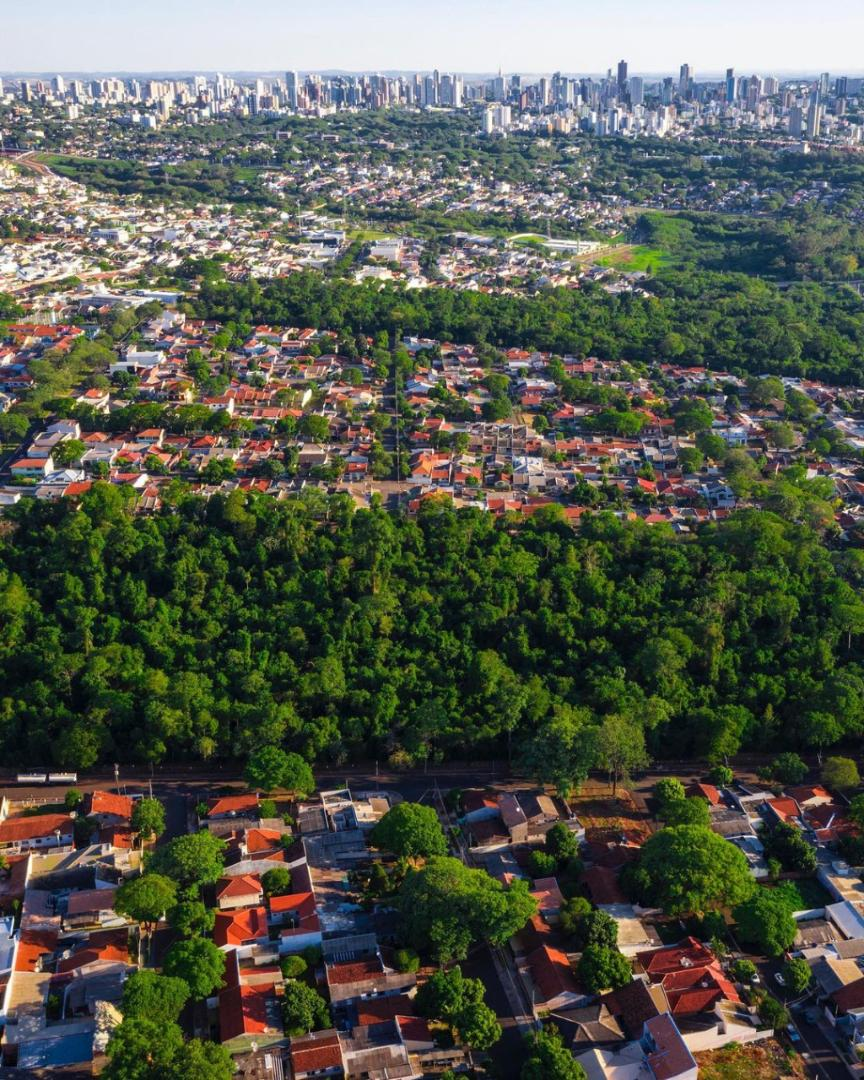 Vista aérea que mostra as várias camadas verdes de Maringá. 19/11/2020